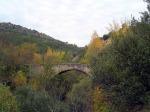 091021 paseos de otoño II-bis