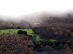 130117 bajo niebla 2