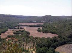 140103 Cañon Bonaval 2
