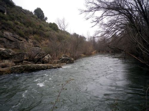 El Sorbe en el puente Culebro