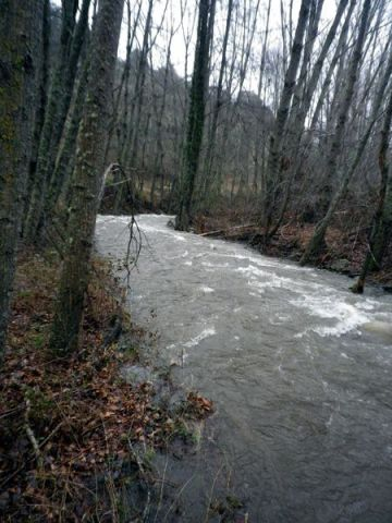 140225 autenticos rios 1