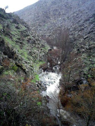 140225 autenticos rios 2
