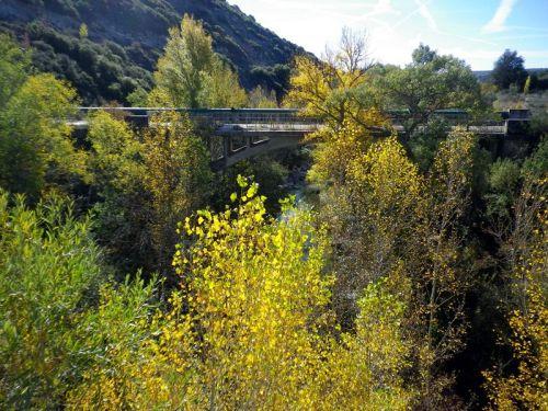 Otoño puente 1