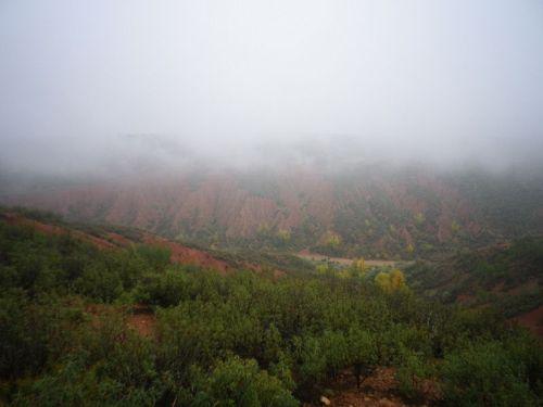 151023 niebla 1
