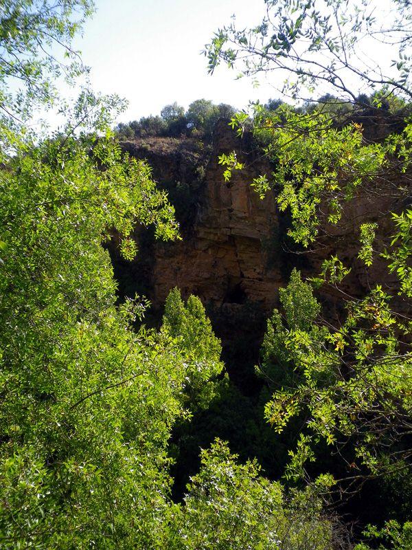 Sierra Norte de Guadalajara, naturaleza en estado puro (3/4)