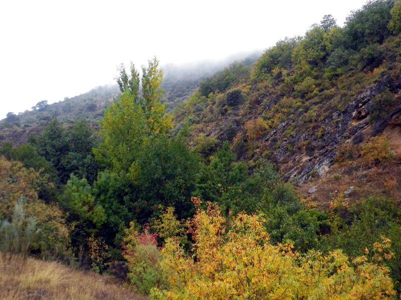 El cañón del Jarama en otoño (1/3)