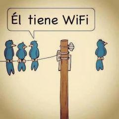 160808 wifi 2