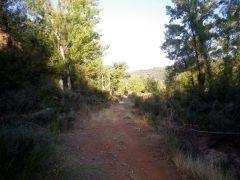 160915-camino-verano-4
