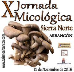 161111-jmicologicas-1