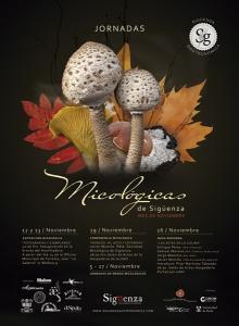 161111-jornadas-micologicas-3